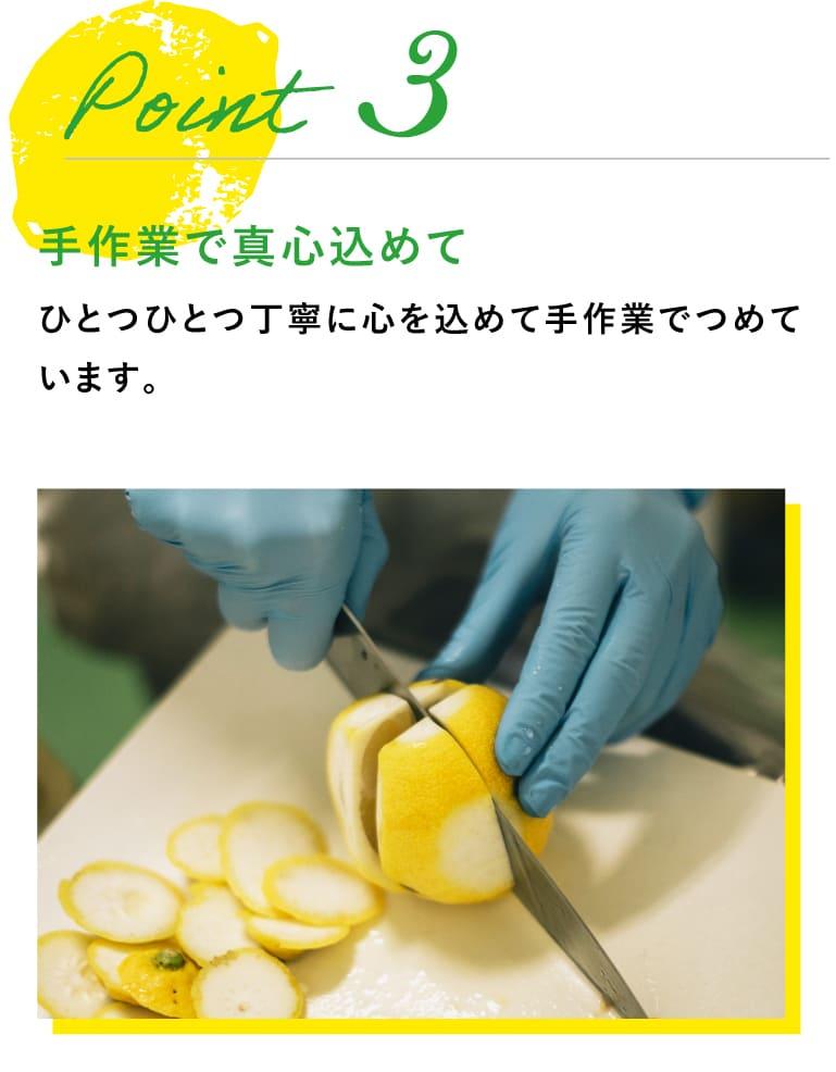 sp用レモン切る